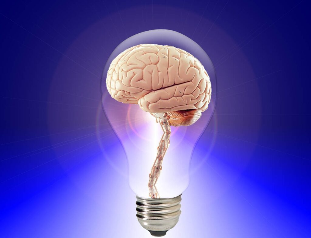 brain, think, human-20424.jpg