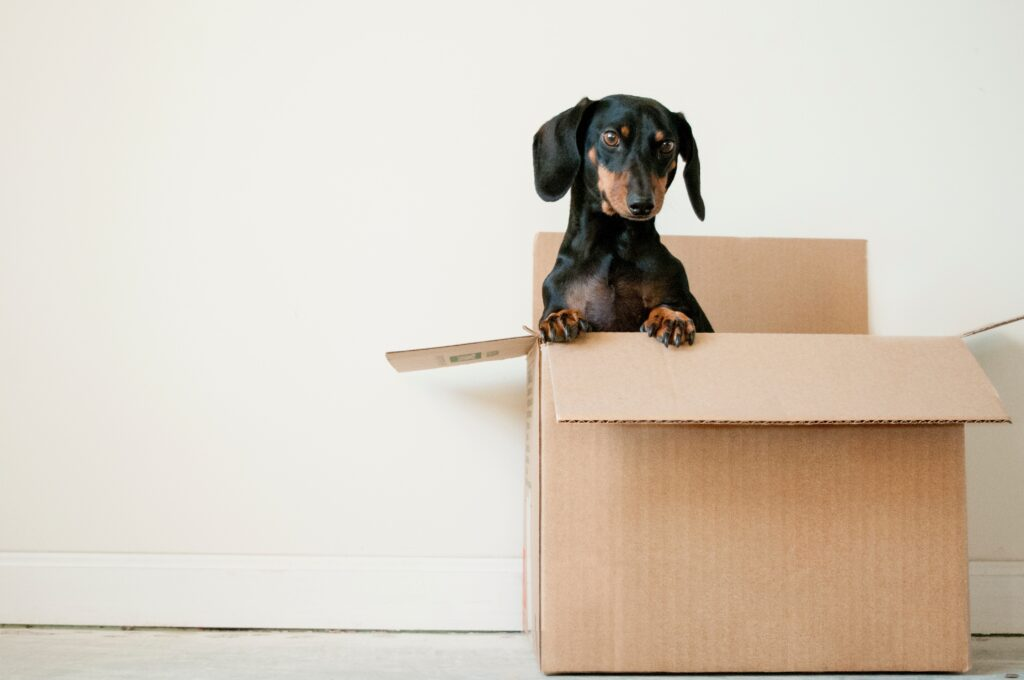 25 Ways to Increase Profits with SEO for Moving Companies